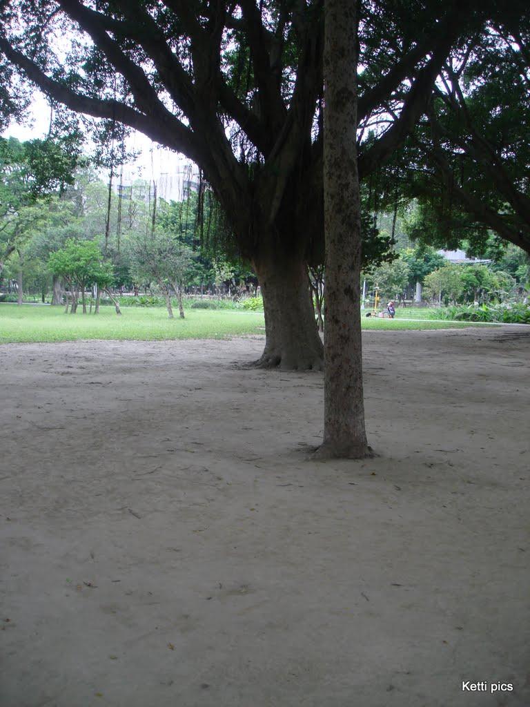 MyTaiwan DSC00288